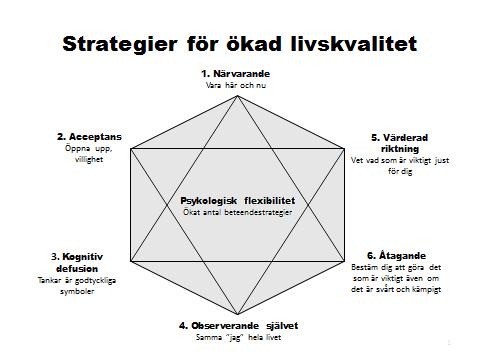 hexaflex till hemsidan strategier för livskvalitet färglagd